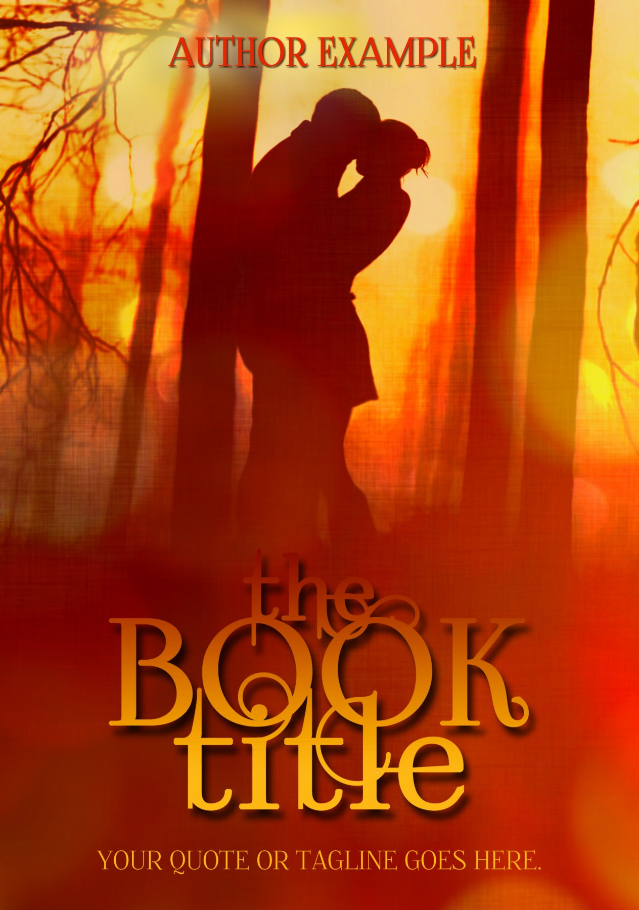 Young Adult Book Cover ~ Premade young adult book covers the book cover designer