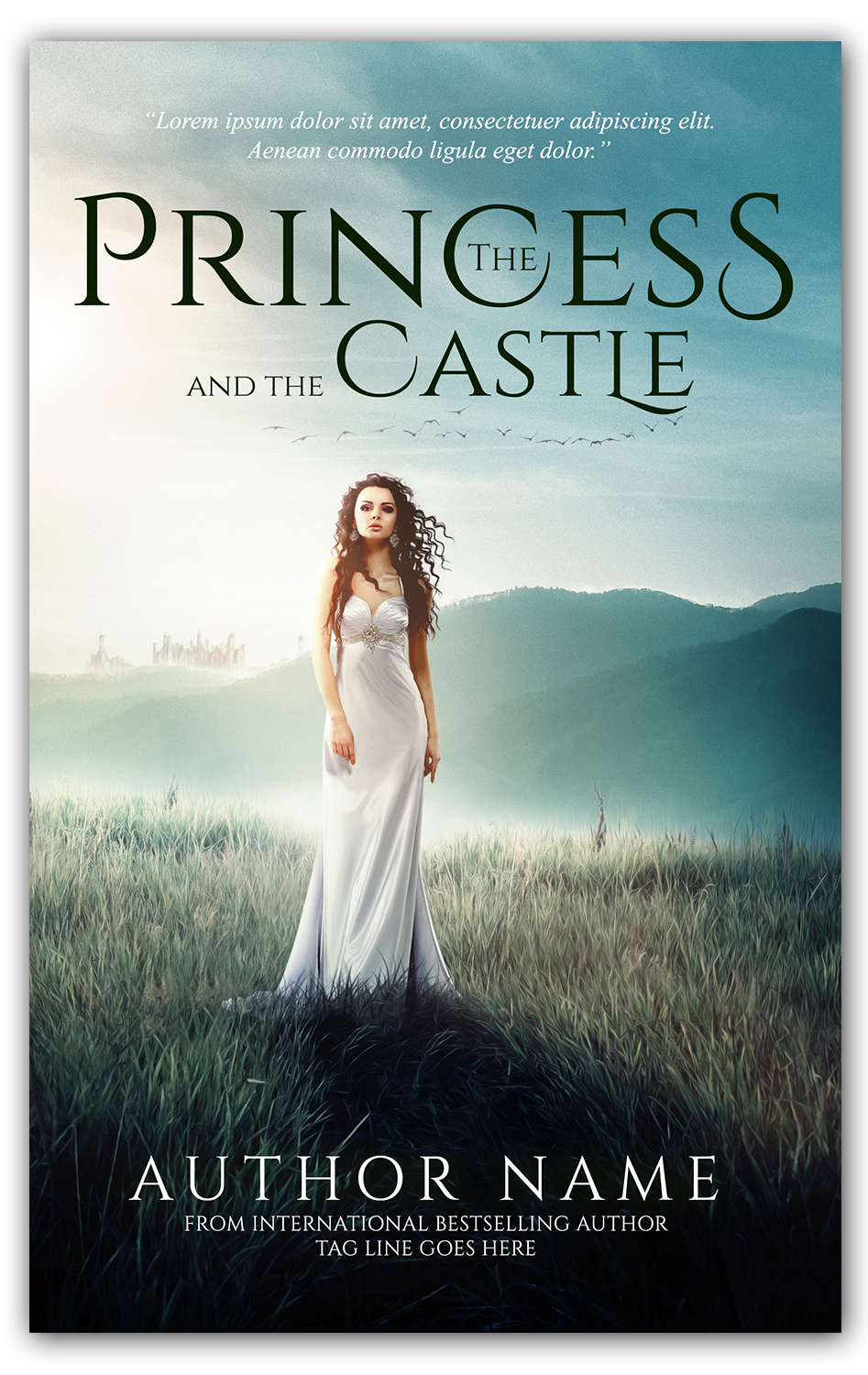 The Princess - ebook and paperback